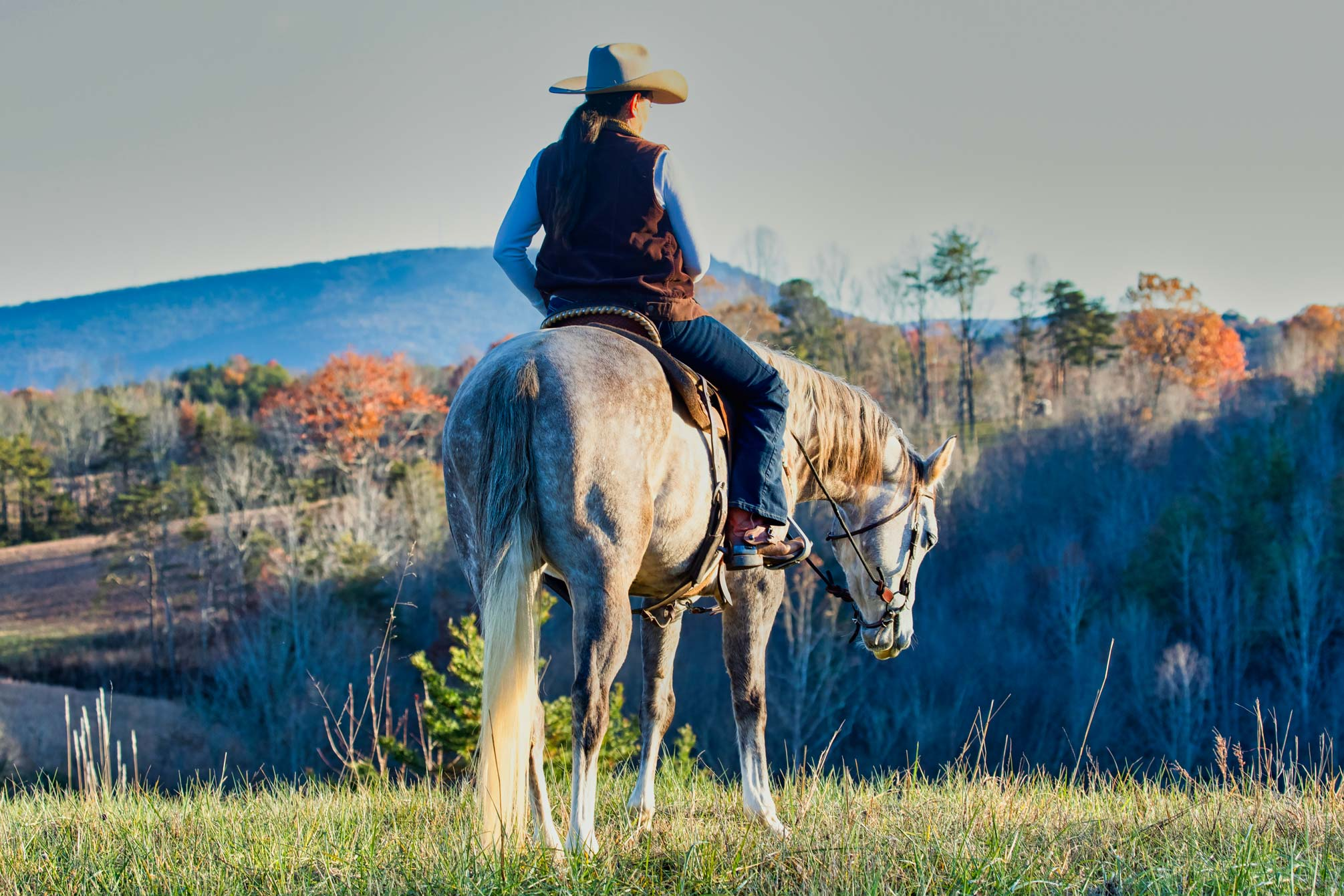 Rawhide-Ranch-Traveler_59I2446