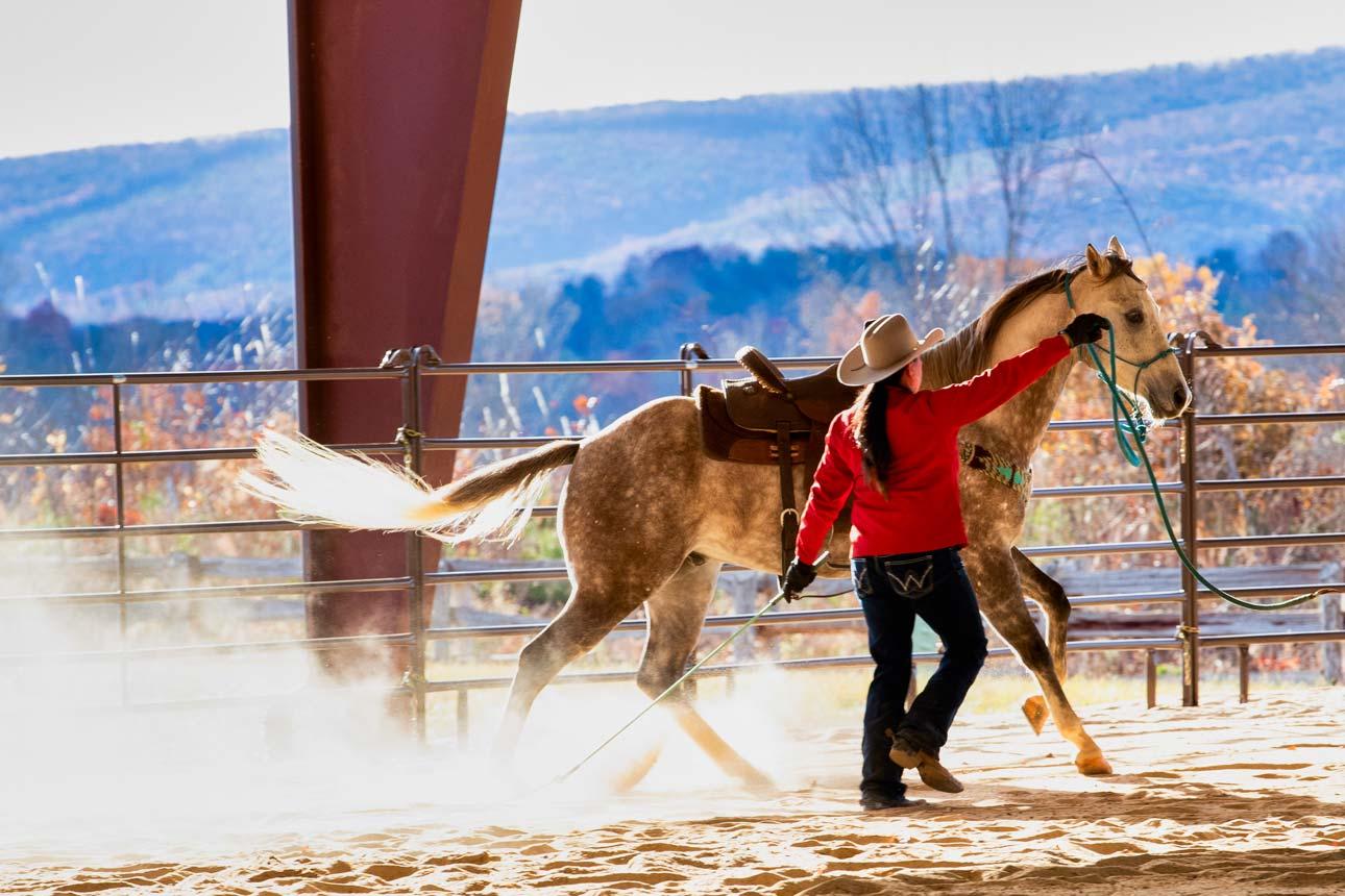 Rawhide-Ranch-Traveler_59I9545