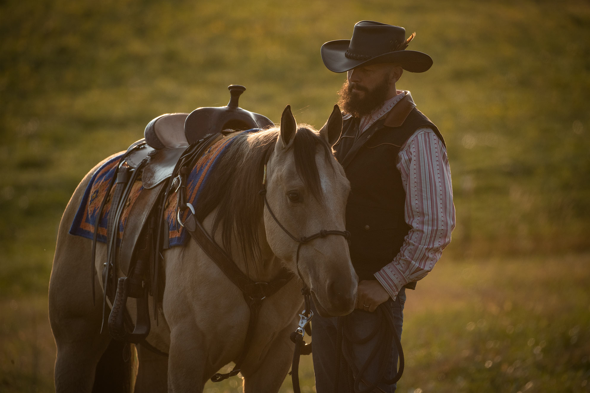 001-Dodge-Luxury-Trail-Horse-For-Sale
