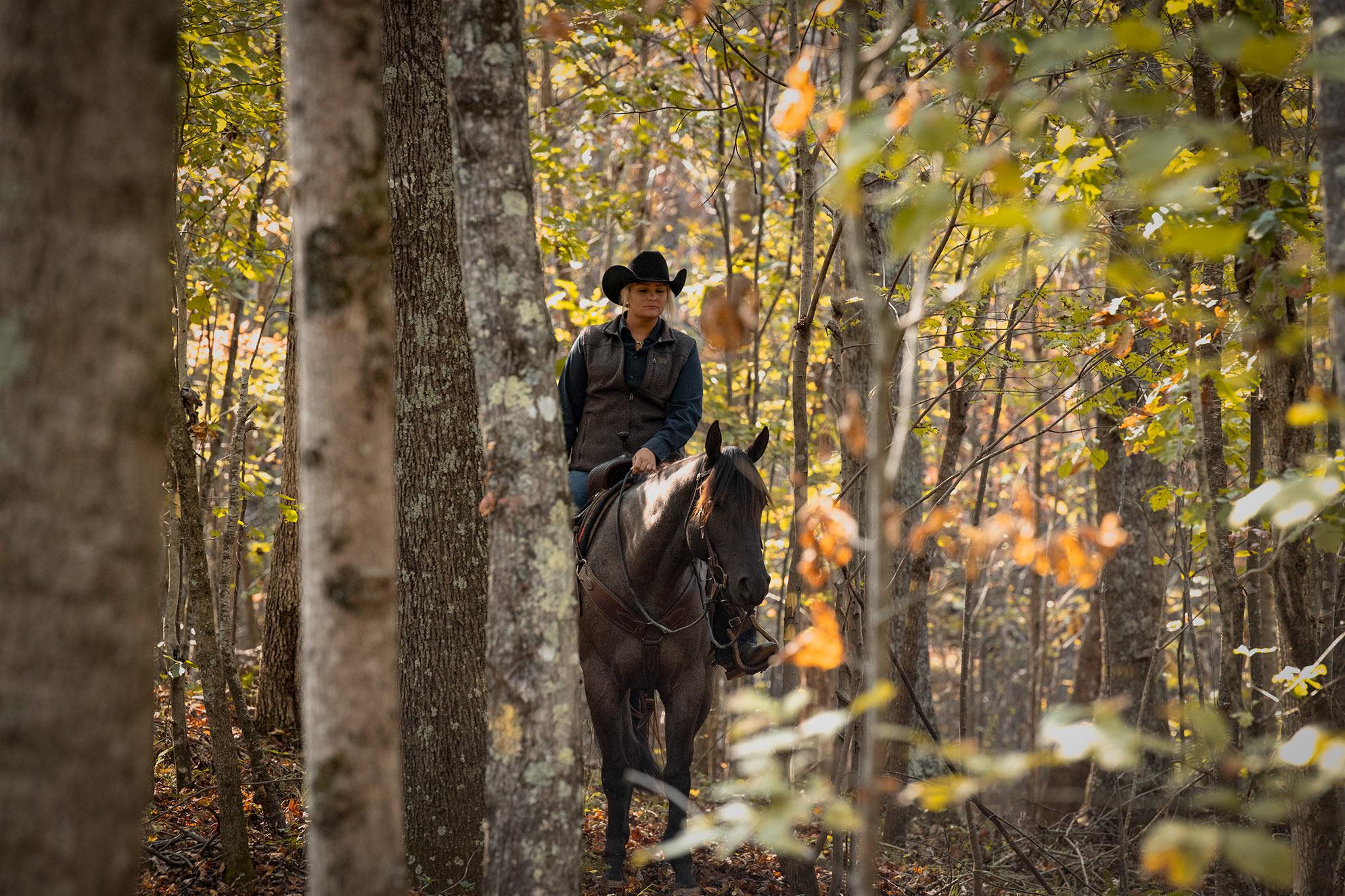 001-Gunsmoke-Luxury-Trail-Horse-For-Sale