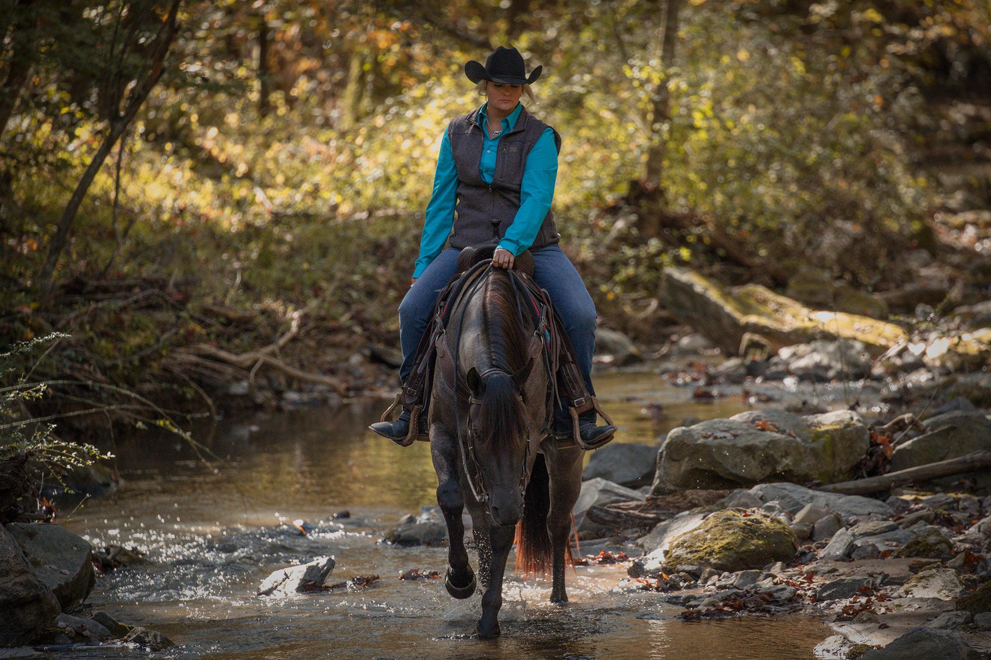 005-Gunsmoke-Luxury-Trail-Horse-For-Sale