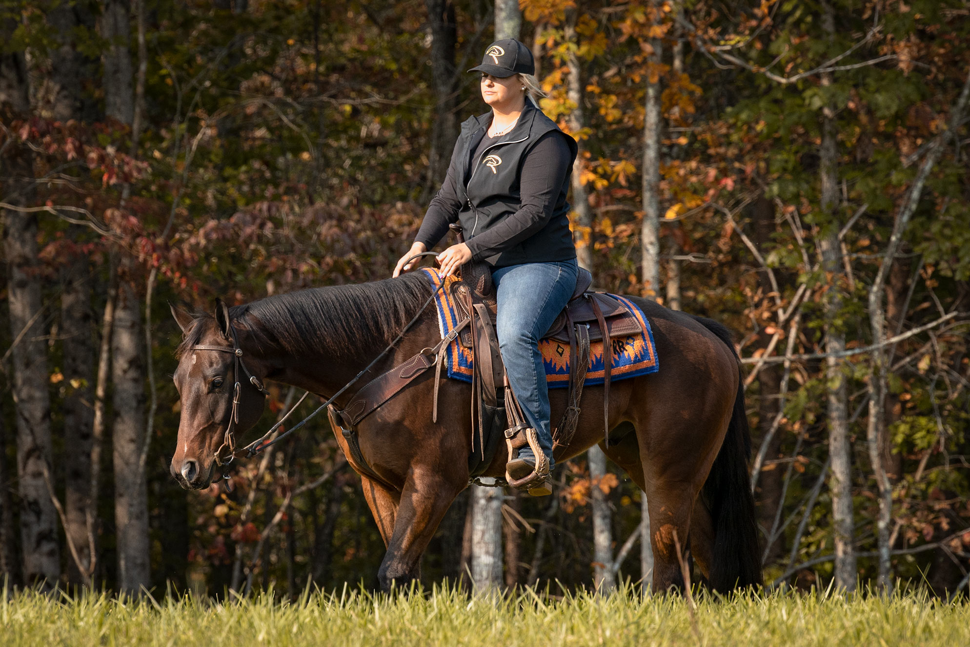 006-Ace-Luxury-Trail-Horse-For-Sale