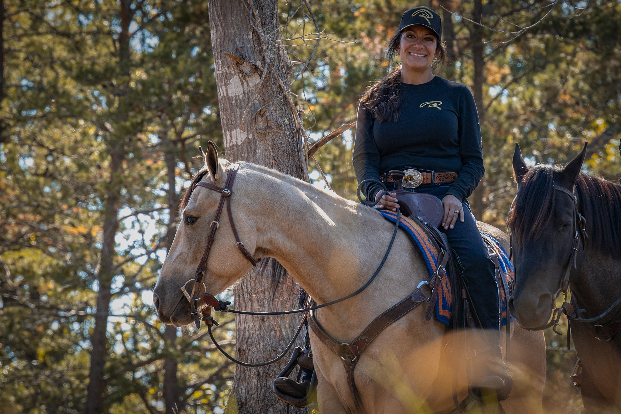 006-Dodge-Luxury-Trail-Horse-For-Sale