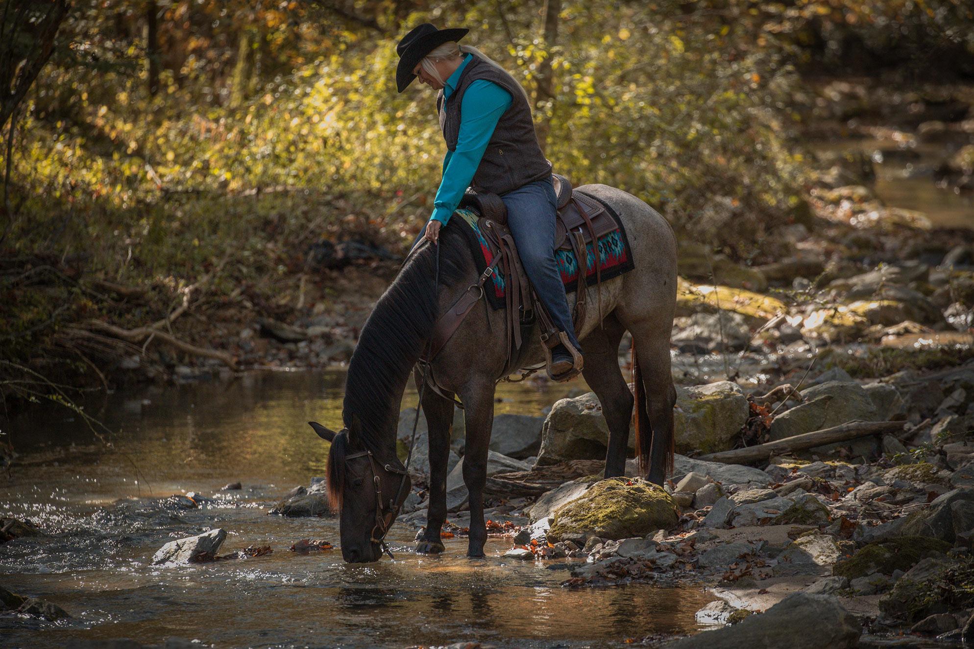 006-Gunsmoke-Luxury-Trail-Horse-For-Sale