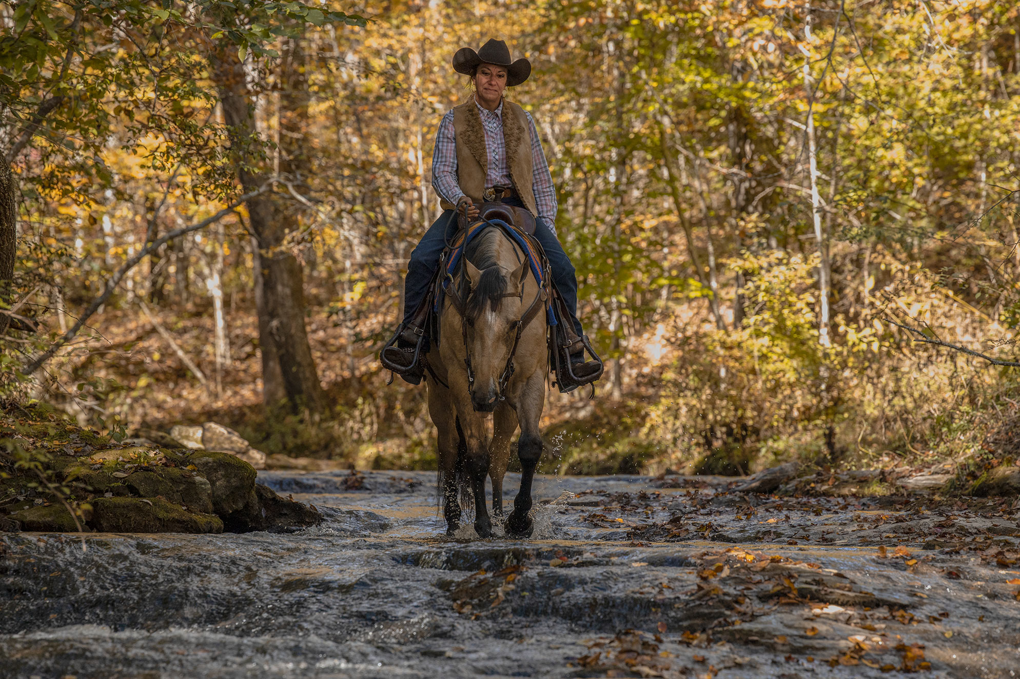 007-Dodge-Luxury-Trail-Horse-For-Sale