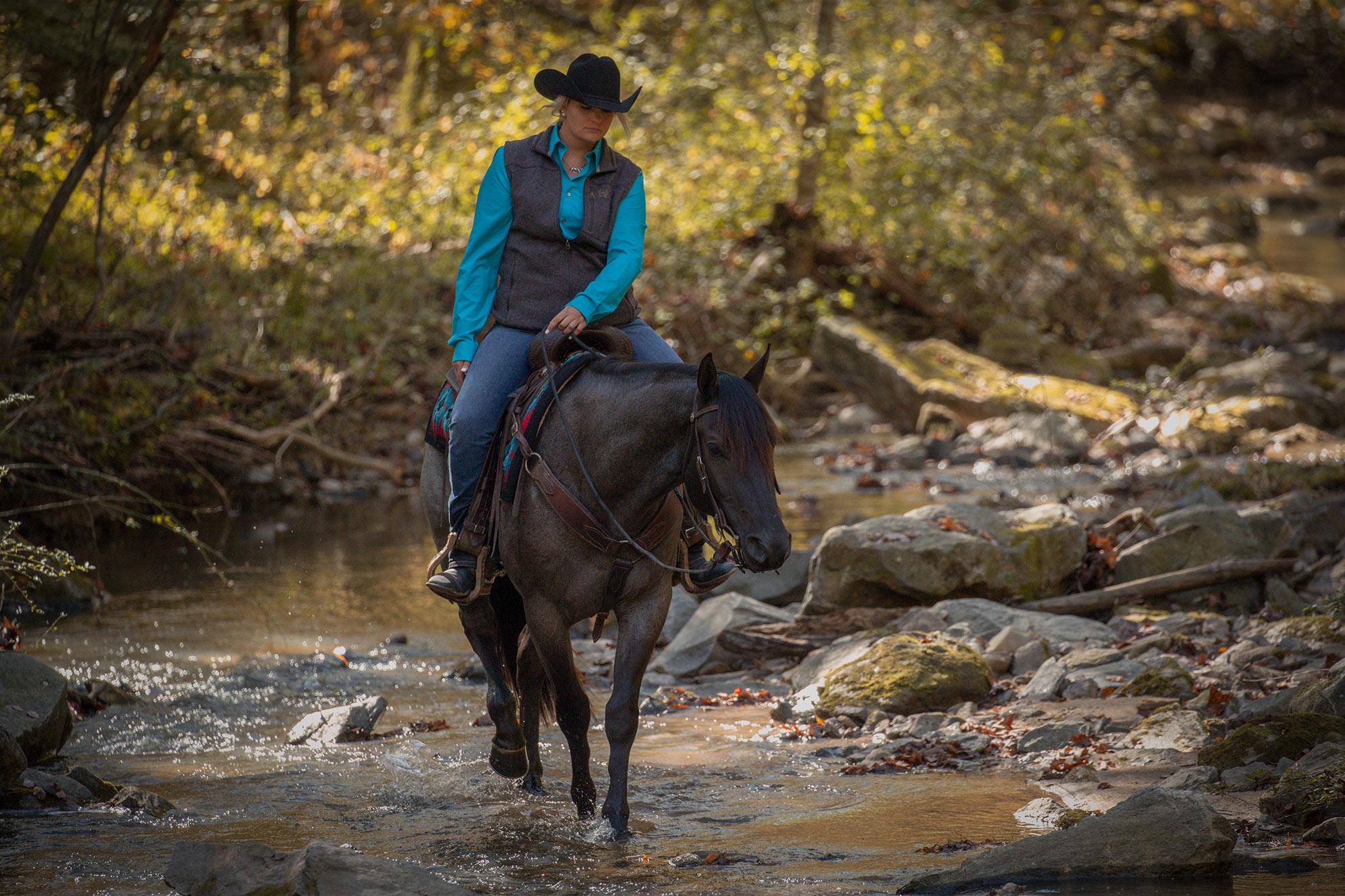 007-Gunsmoke-Luxury-Trail-Horse-For-Sale