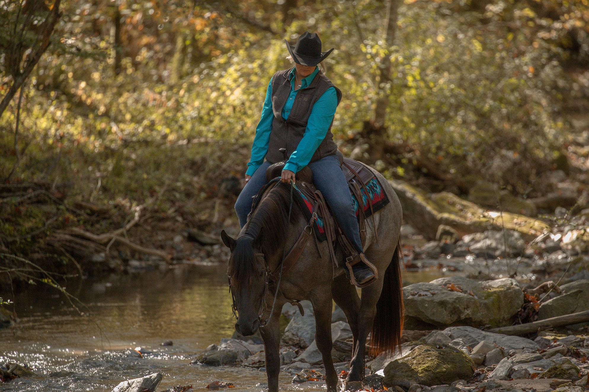008-Gunsmoke-Luxury-Trail-Horse-For-Sale