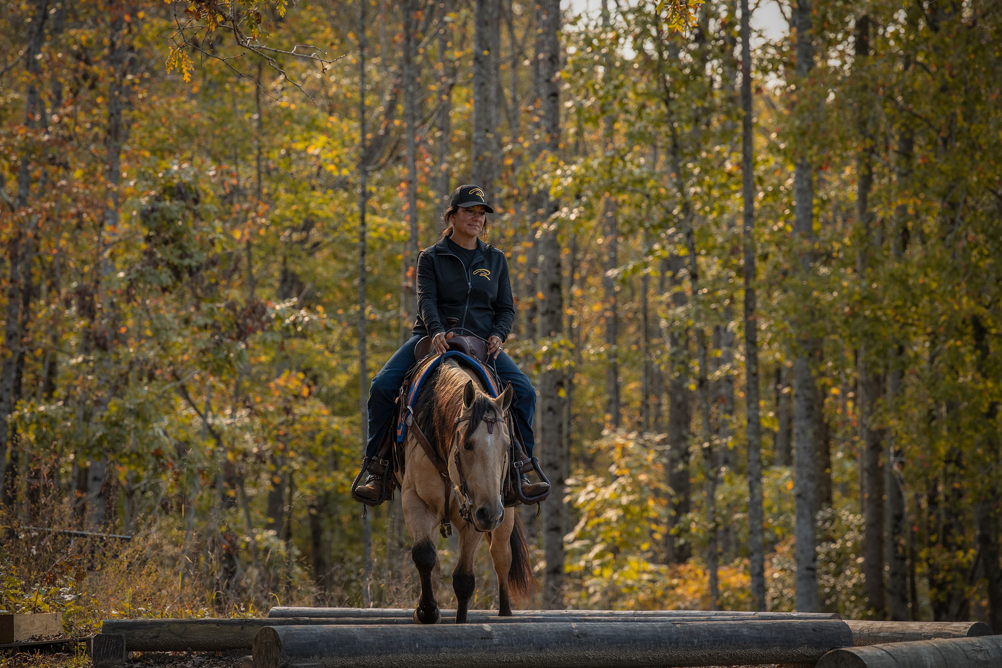 009-Dodge-Luxury-Trail-Horse-For-Sale