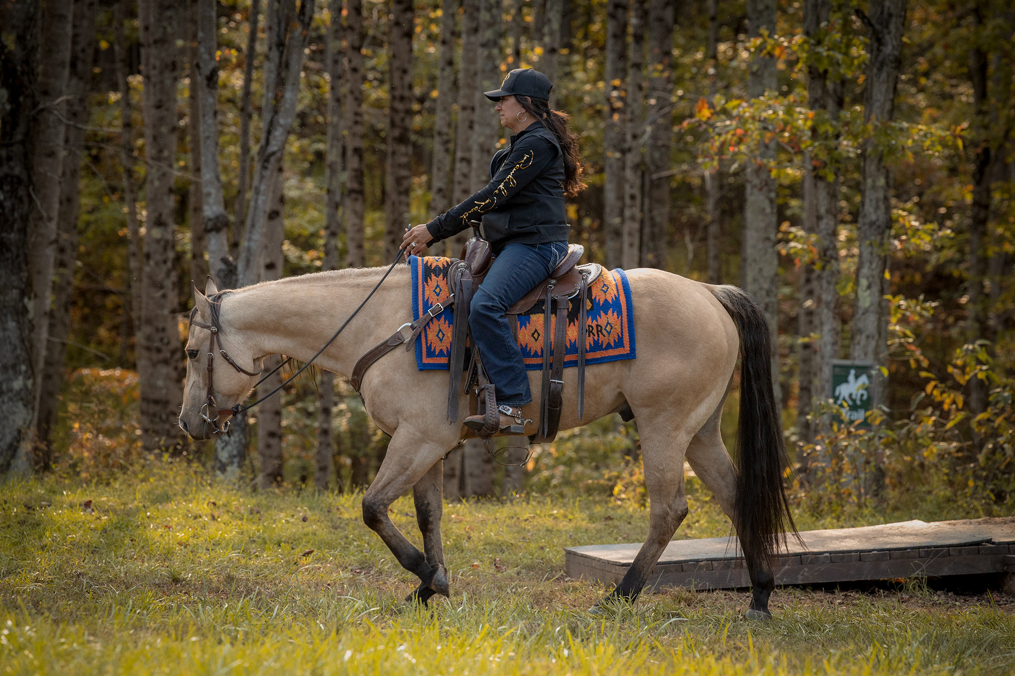 012-Dodge-Luxury-Trail-Horse-For-Sale