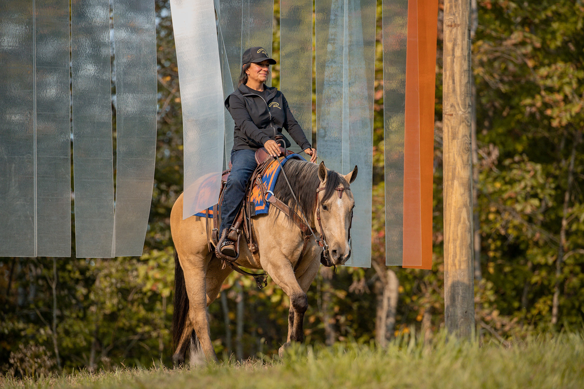 013-Dodge-Luxury-Trail-Horse-For-Sale
