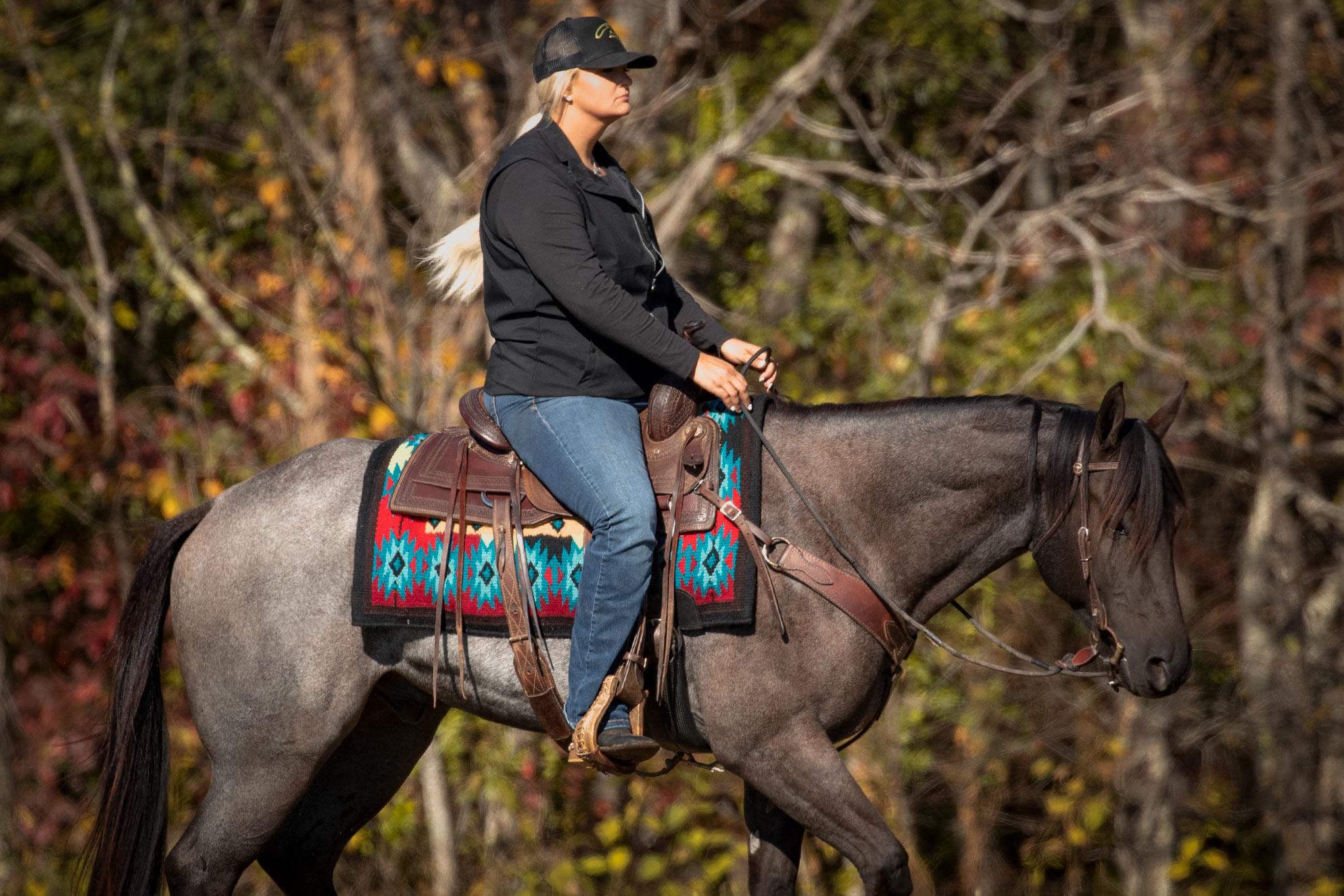 013-Gunsmoke-Luxury-Trail-Horse-For-Sale