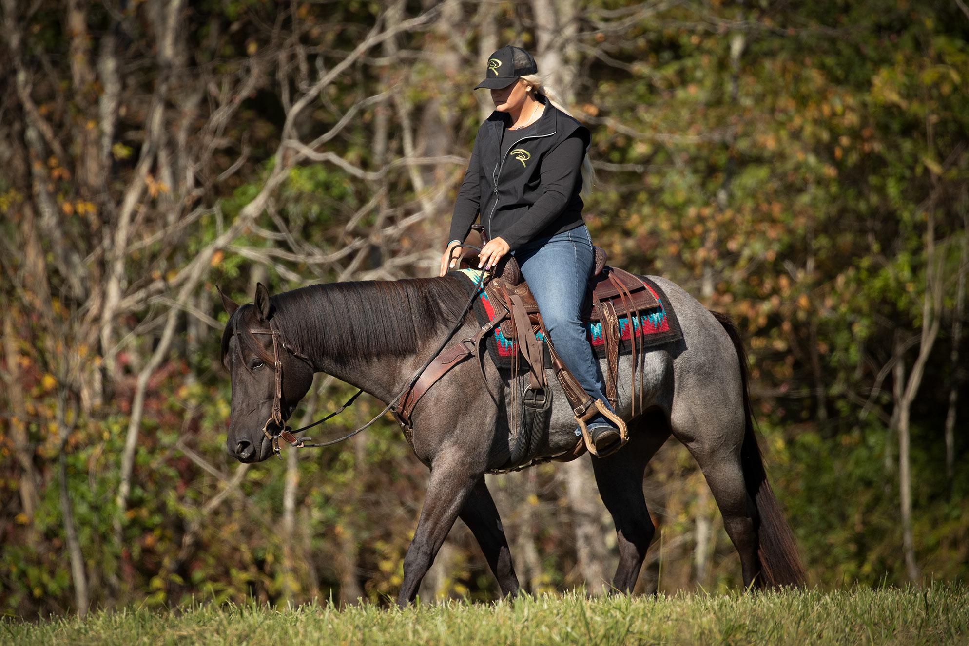 014-Gunsmoke-Luxury-Trail-Horse-For-Sale