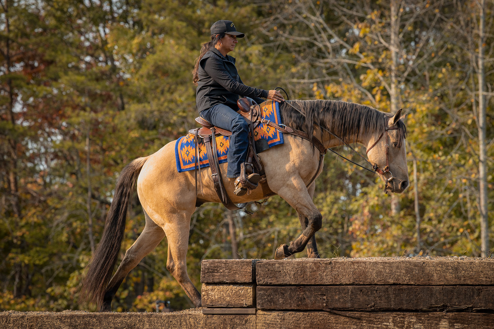 015-Dodge-Luxury-Trail-Horse-For-Sale