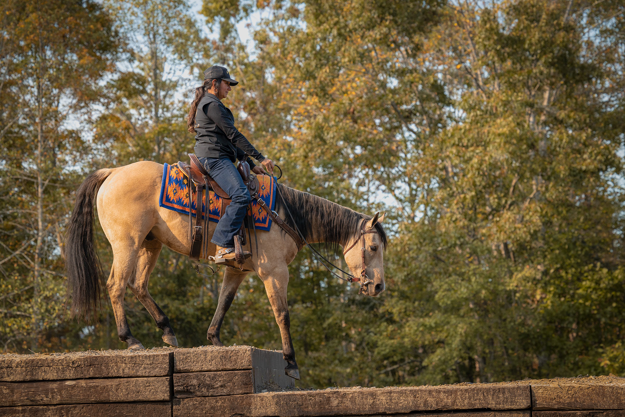 016-Dodge-Luxury-Trail-Horse-For-Sale