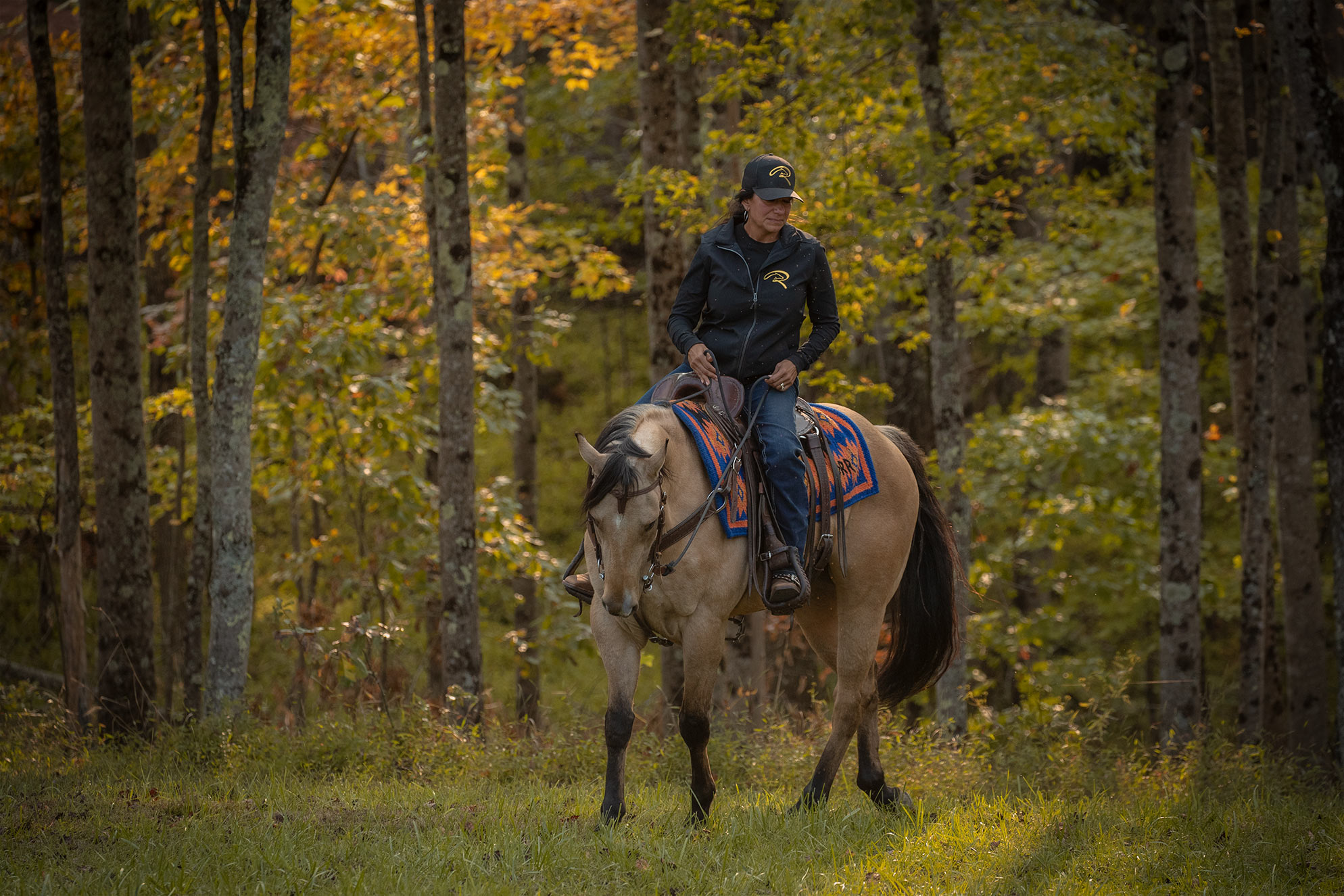 017-Dodge-Luxury-Trail-Horse-For-Sale