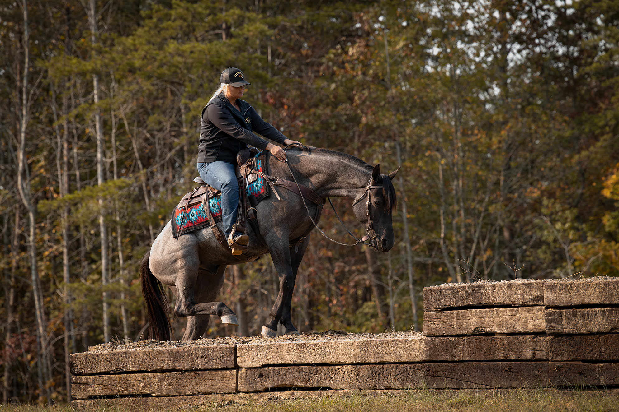 017-Gunsmoke-Luxury-Trail-Horse-For-Sale