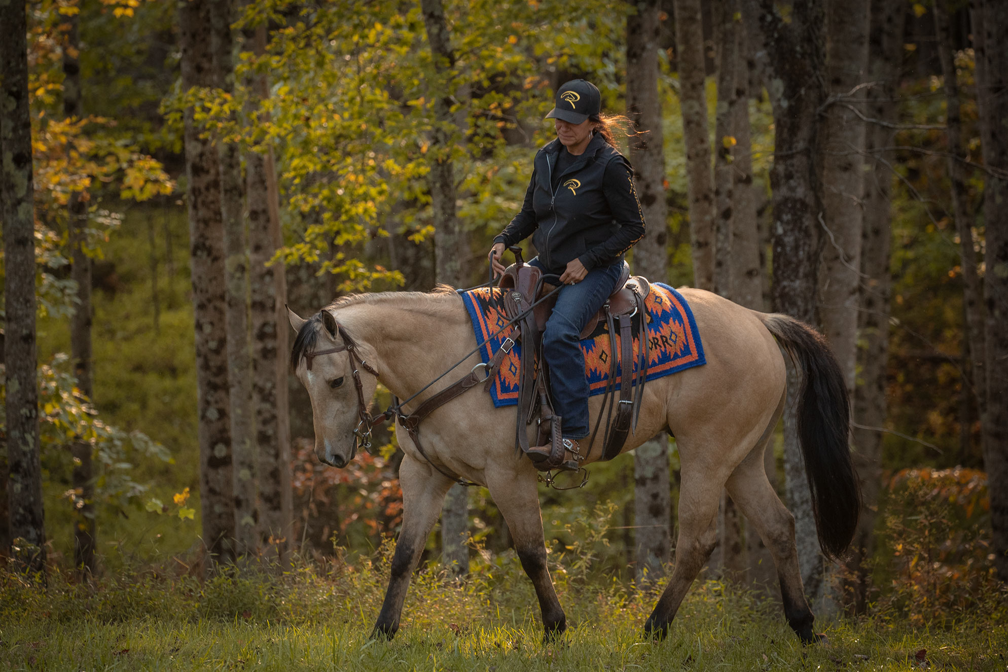 018-Dodge-Luxury-Trail-Horse-For-Sale