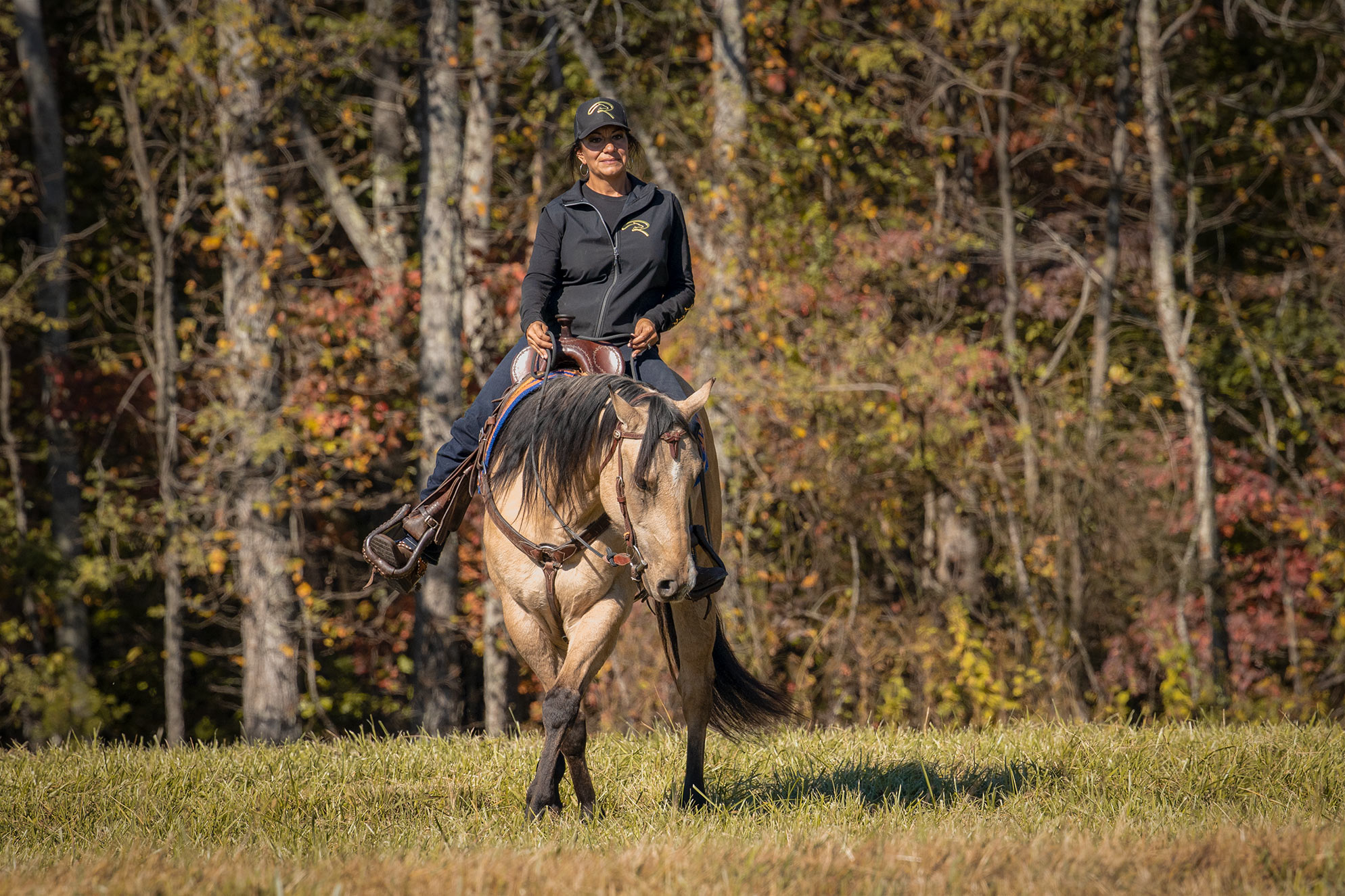 019-Dodge-Luxury-Trail-Horse-For-Sale