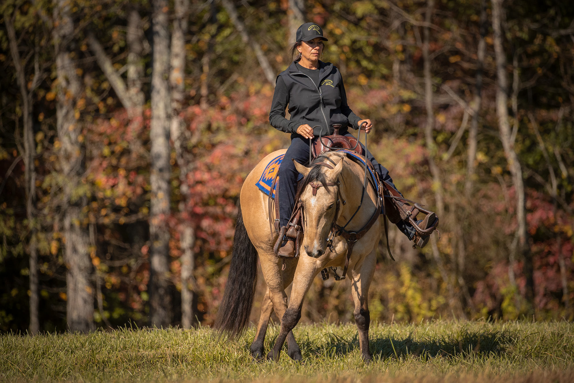 020-Dodge-Luxury-Trail-Horse-For-Sale