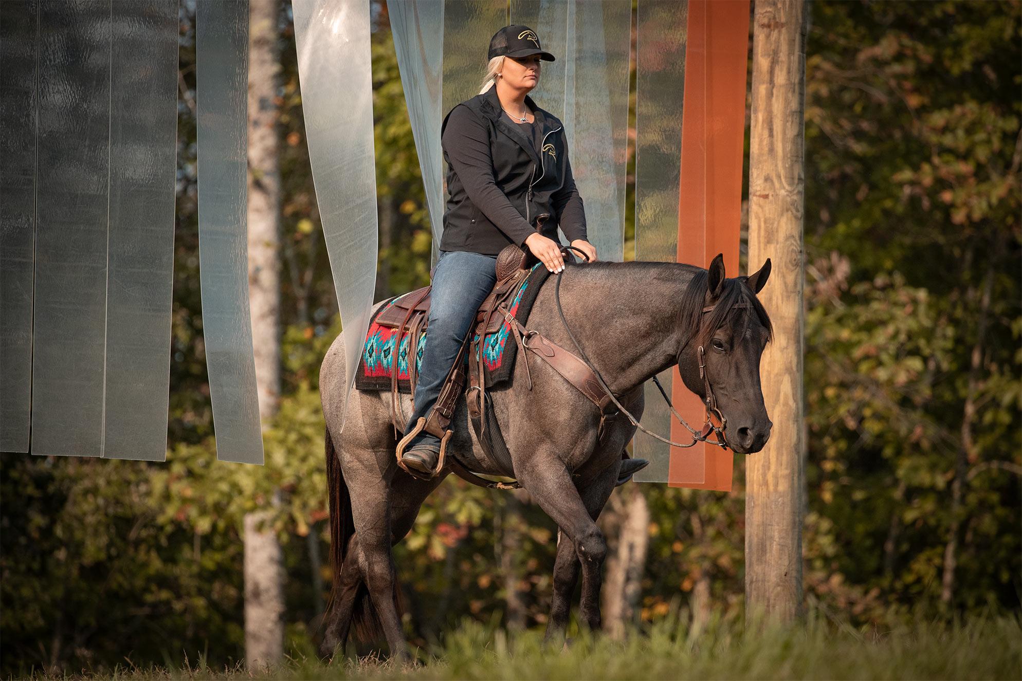 020-Gunsmoke-Luxury-Trail-Horse-For-Sale