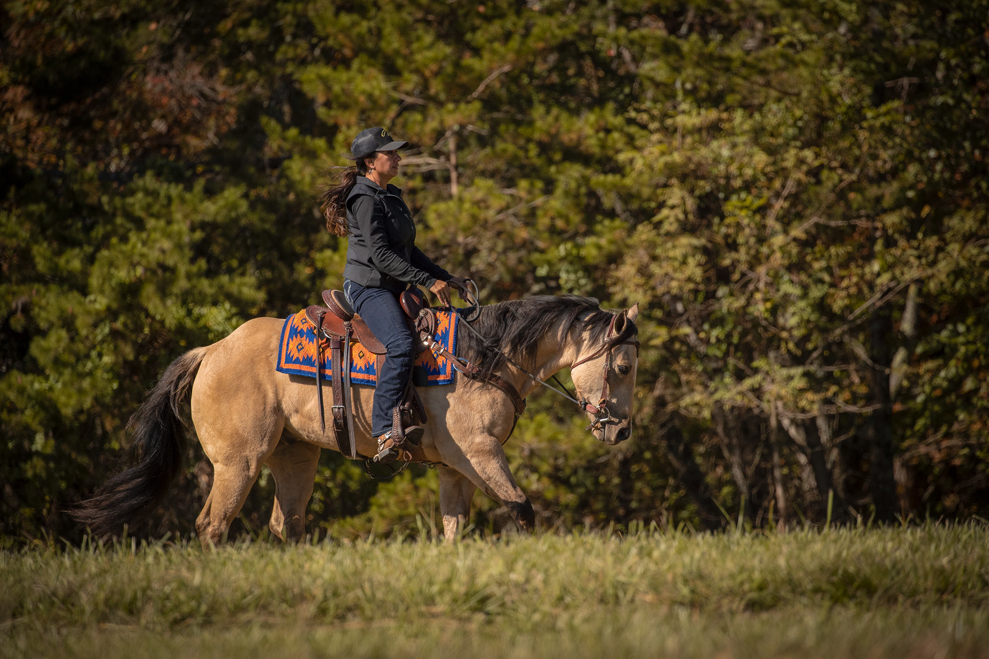 021-Dodge-Luxury-Trail-Horse-For-Sale