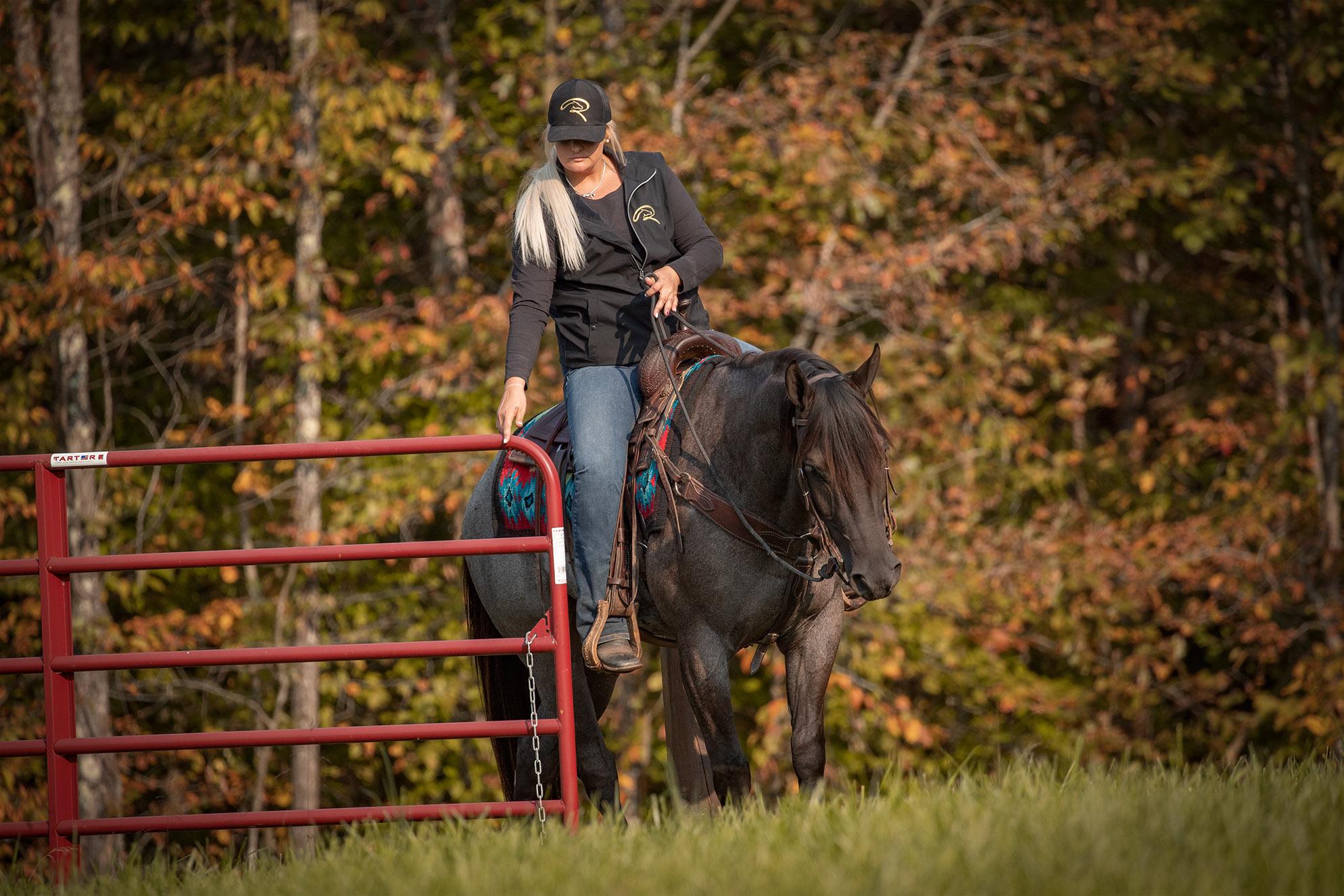 021-Gunsmoke-Luxury-Trail-Horse-For-Sale