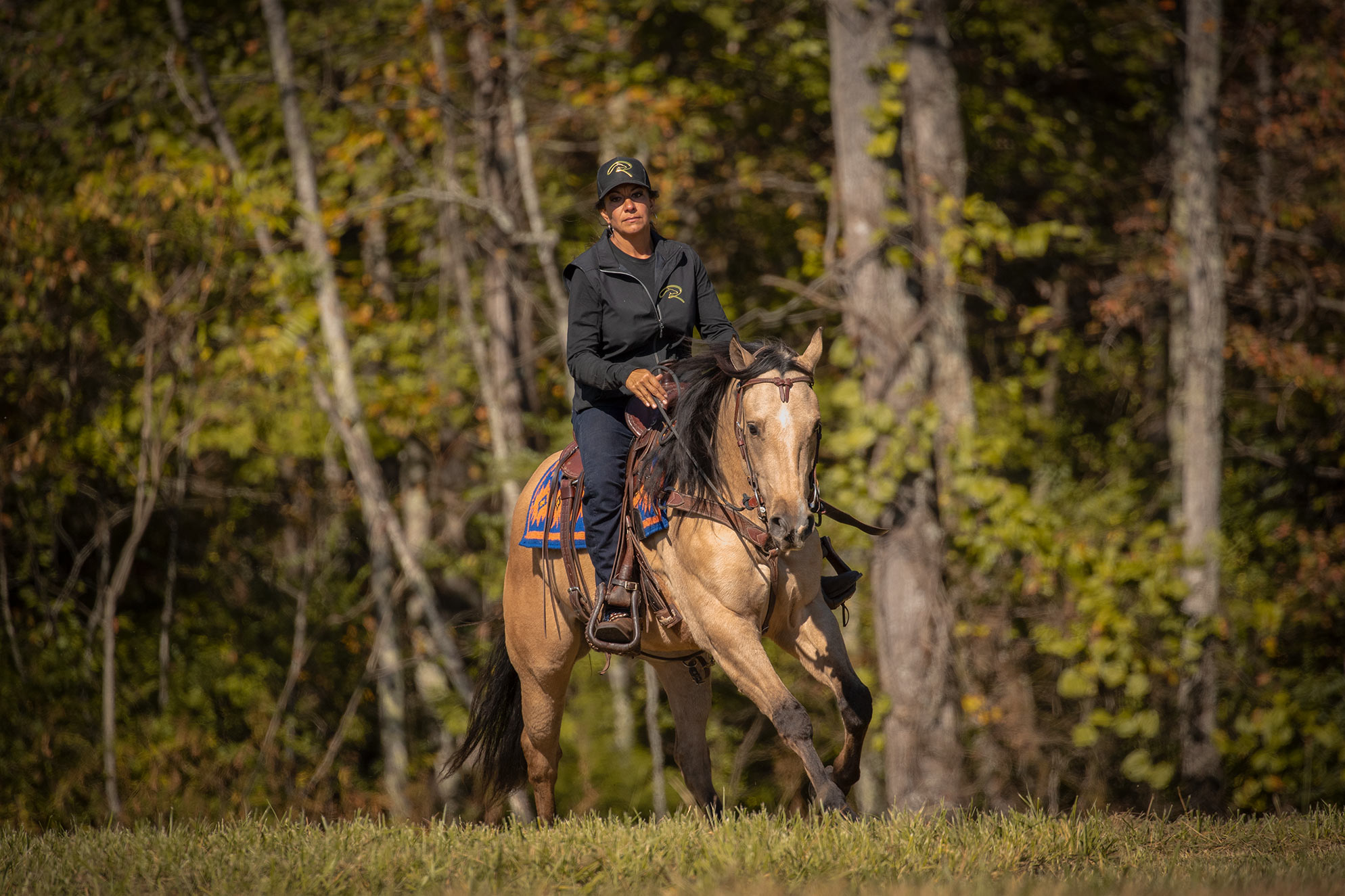 022-Dodge-Luxury-Trail-Horse-For-Sale