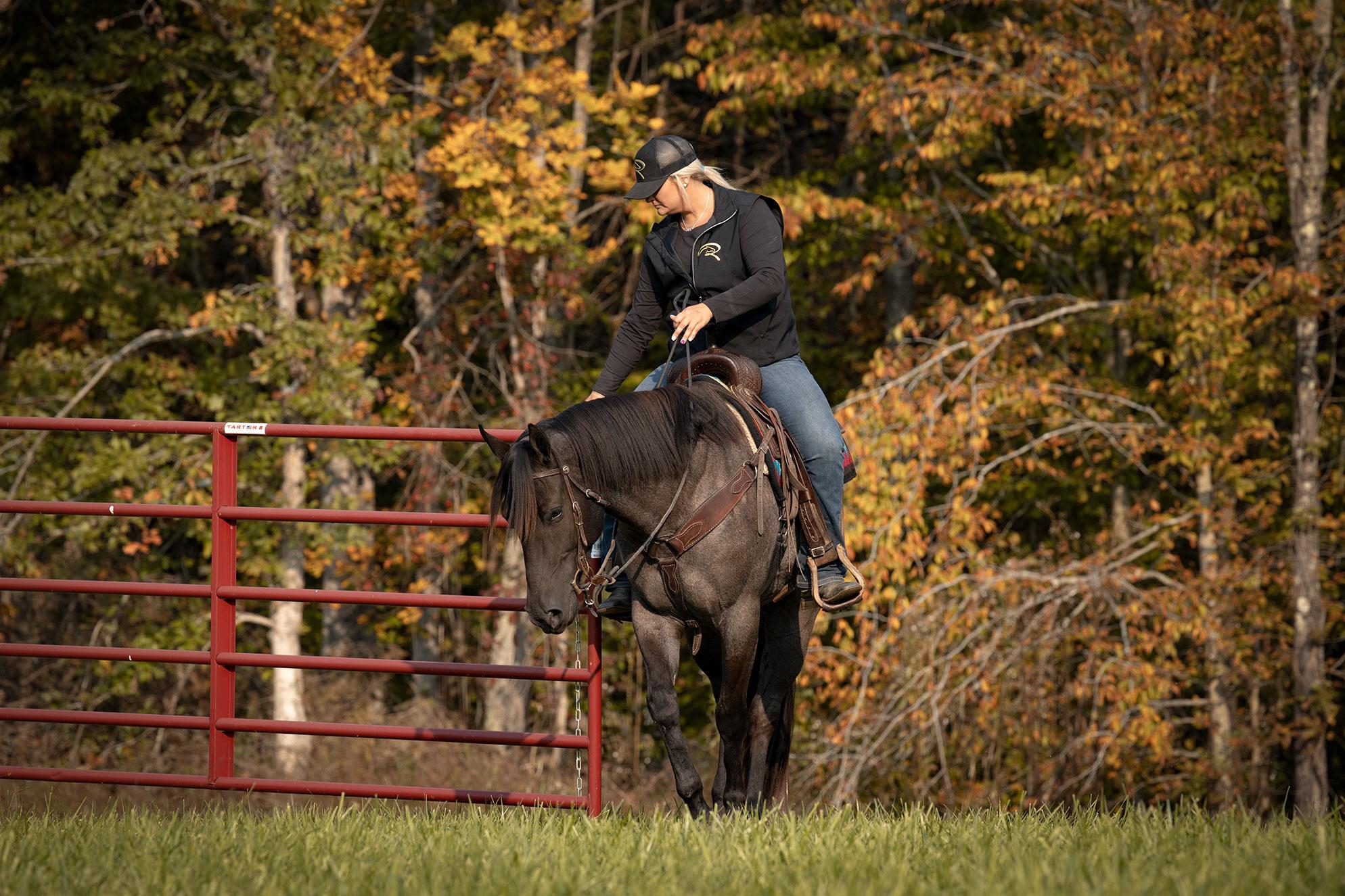 022-Gunsmoke-Luxury-Trail-Horse-For-Sale