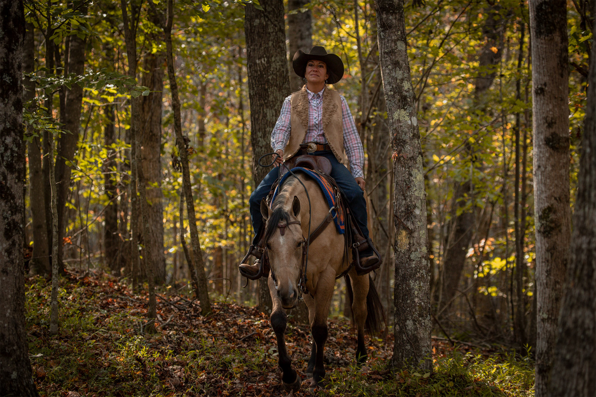 028-Dodge-Luxury-Trail-Horse-For-Sale